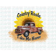 Country Road Take Me Home SP